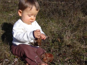 Xander with leaf