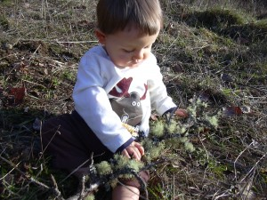 Xander with tree branch