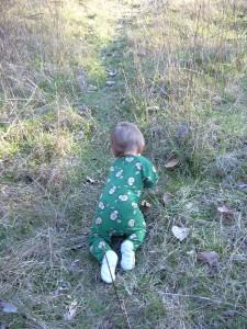Xander crawl